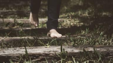 Reflexão: ciência dos santos ou caminho de perfeição?