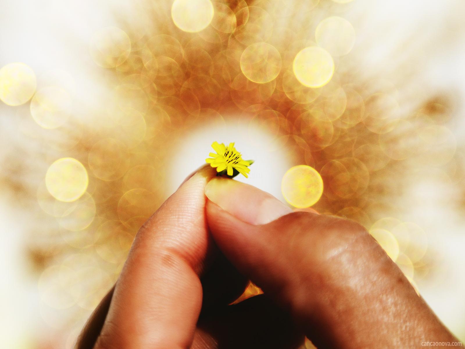 Reconhecer o agir de Deus é uma necessidade para nós