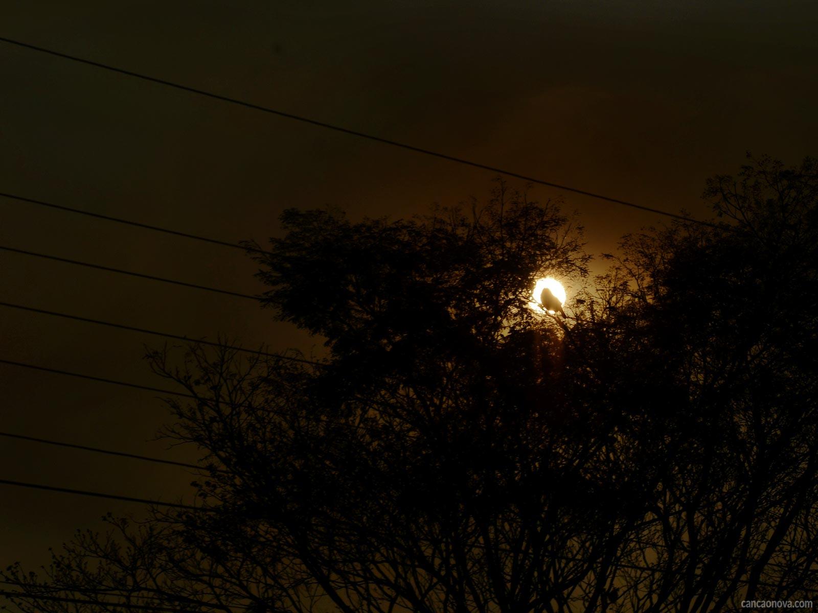 Como acontece a noite escura da alma nas sextas moradas