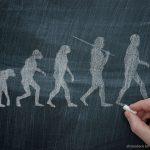 O que a Igreja diz sobre a teoria da evolução