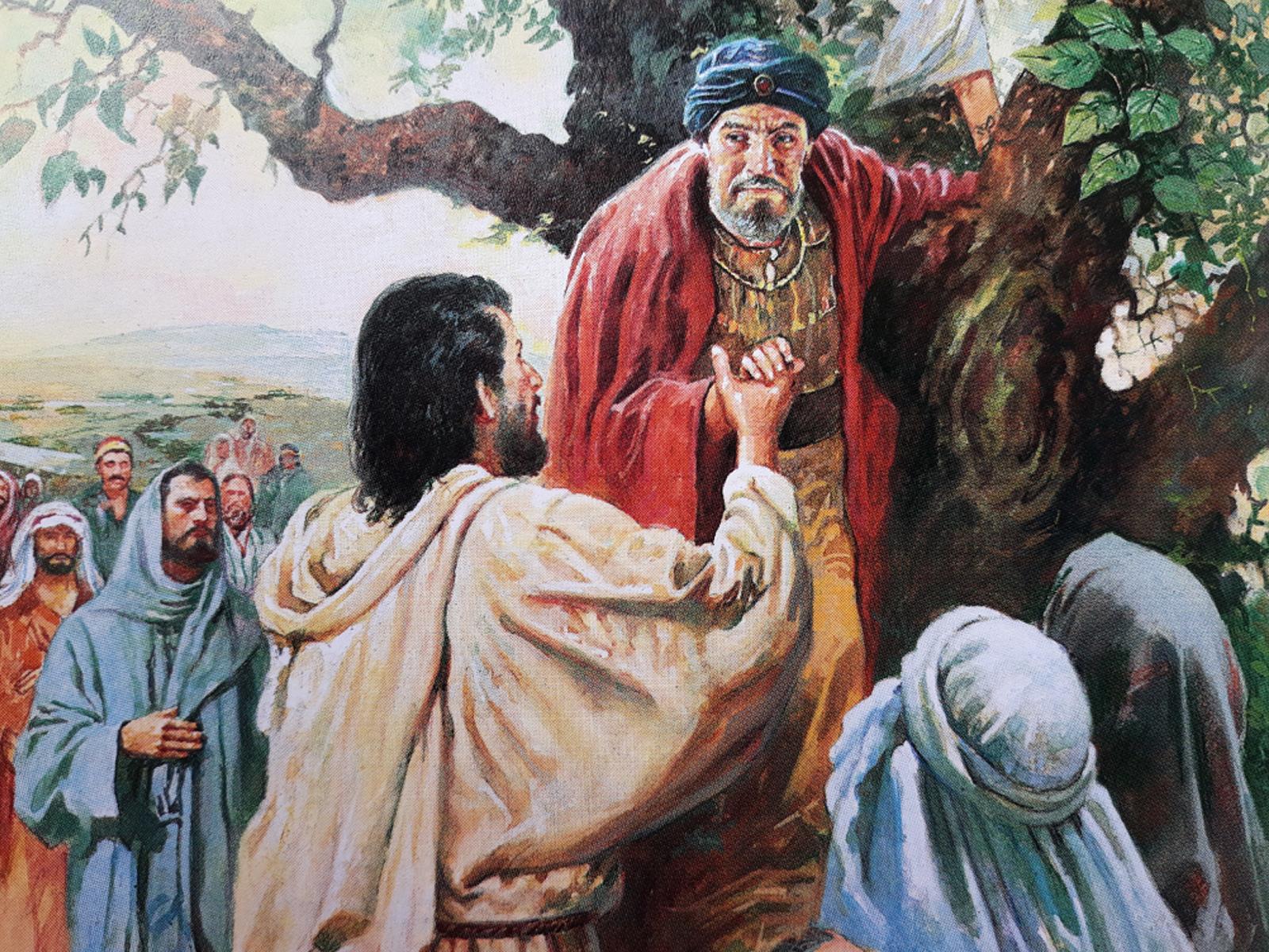 Continue a reflexão do encontro de Zaqueu com Jesus