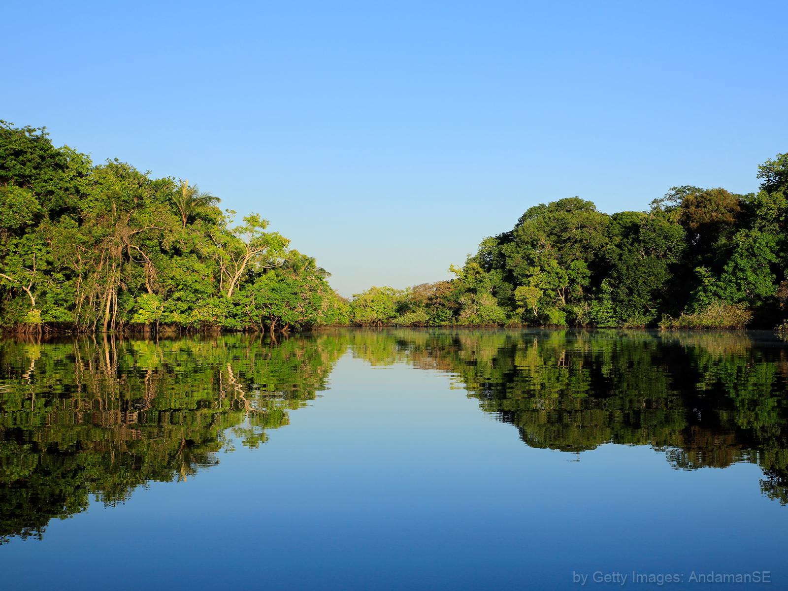 Igreja e meio ambiente, olhos voltados para a Amazônia