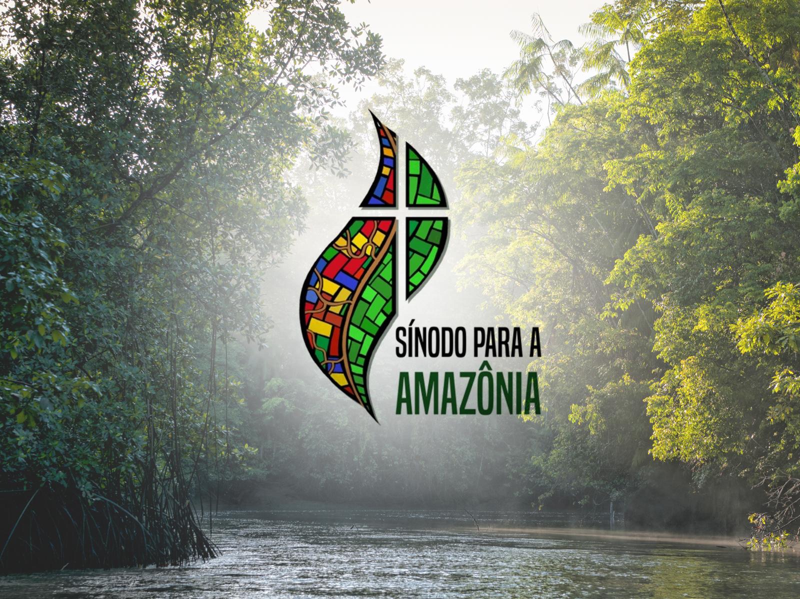A verdade sobre o Sínodo da Amazônia