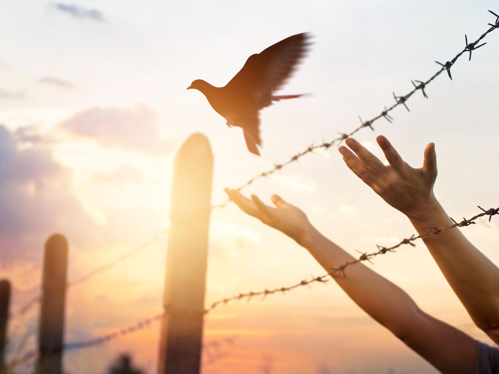 Permita-se ser prisioneiro do Espírito