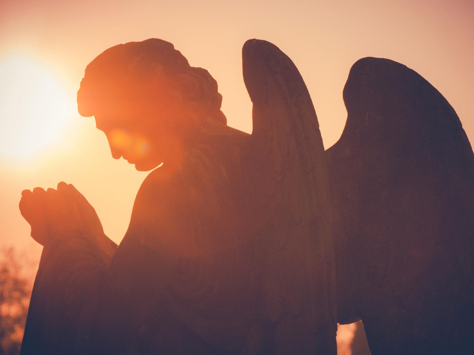 Nós-somos-irmãos-de-anjos
