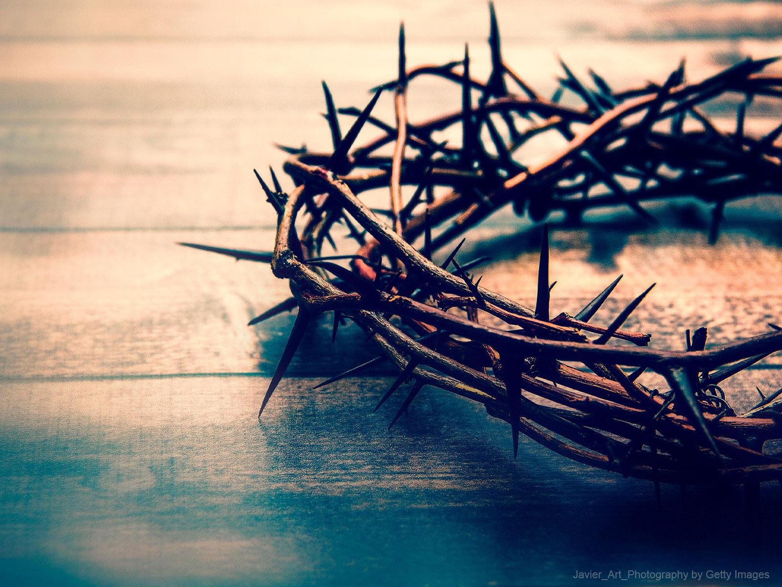A vida de santidade exige sacrifício
