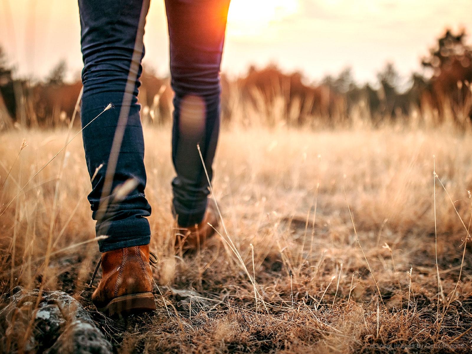 Caminhemos rumo à santidade!
