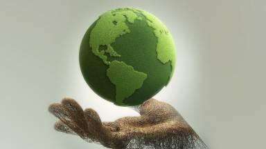 Os cinco ensinamentos do Papa Francisco sobre o meio ambiente