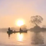Conheça o Pantanal sem sair de casa