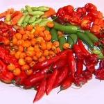 Saiba como a pimenta pode auxiliar no tratamento contra dor
