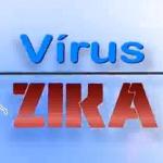Telejornal CN Notícias produz reportagens especiais sobre Zika Vírus