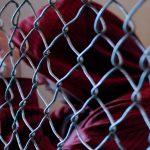 A importância da Pastoral Carcerária é tema do PHN