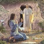 Jesus, o sentido da nossa vida