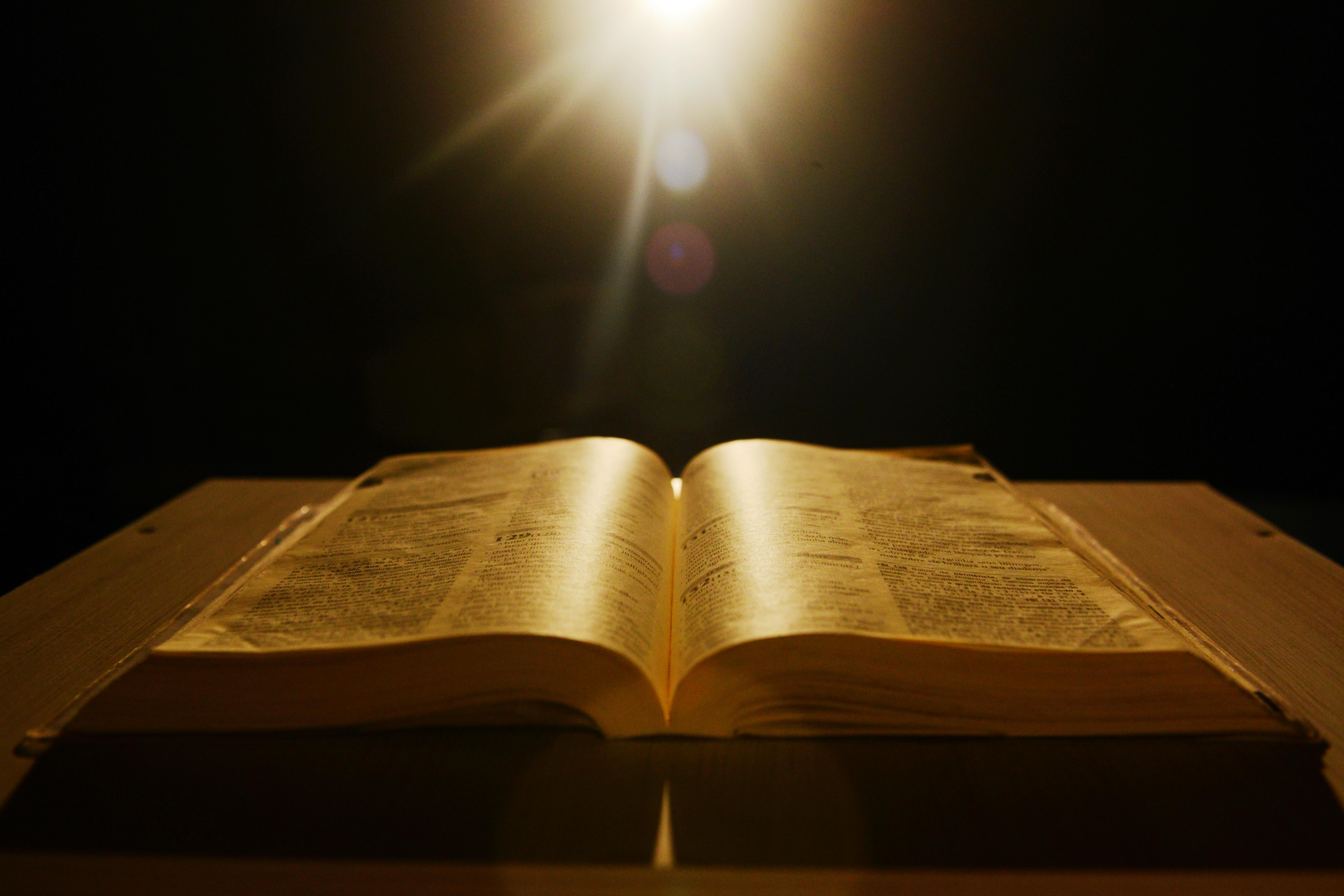 [:pb]Mes de La Biblia[:] - Santuário do Pai das Misericórdias