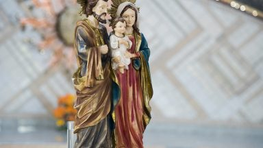 Homilia da Santa Missa para as Famílias - Padre Uélisson Pereira (19/10/2020)