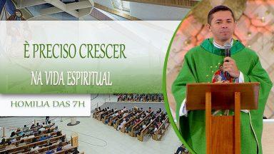 É preciso crescer na vida espiritual  - Padre Elenildo Pereira 13/10/2020
