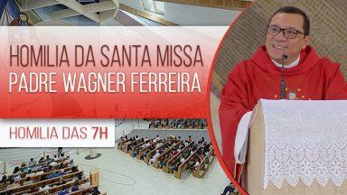 Homilia da Santa Missa com Padre Wagner Ferreira (28/10/2020)