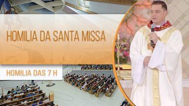 Homilia da Santa Missa -  Padre Elinton Costa (06/11/2020)