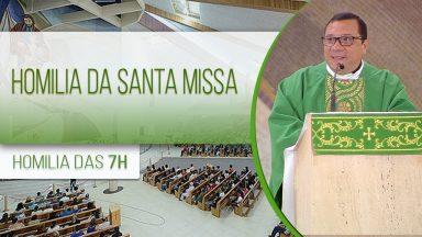 Homilia da Santa Missa - Padre Wagner Ferreira (08/11/2020)
