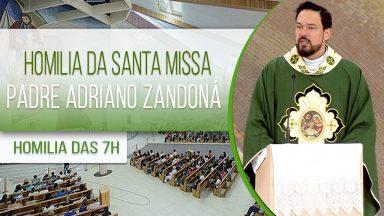 Homilia da Santa Missa - Padre Adriano Zandoná  (29/01/2021)