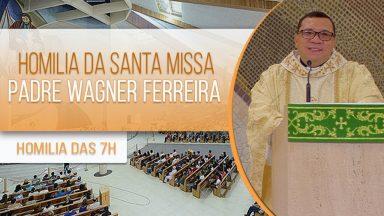 Homilia da Santa Missa - Padre Wagner Ferreira (31/01/2021)