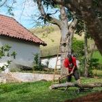 ser_de_deus_e_cultivar_a_terra