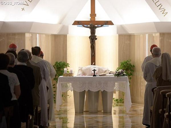 Papa pede orações para não destruir a unidade na Igreja / Foto: L'Osservatore Romano