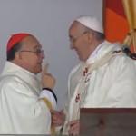 Papa Francisco promete voltar a Aparecida em 2017