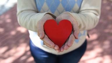 Curando as feridas do coração