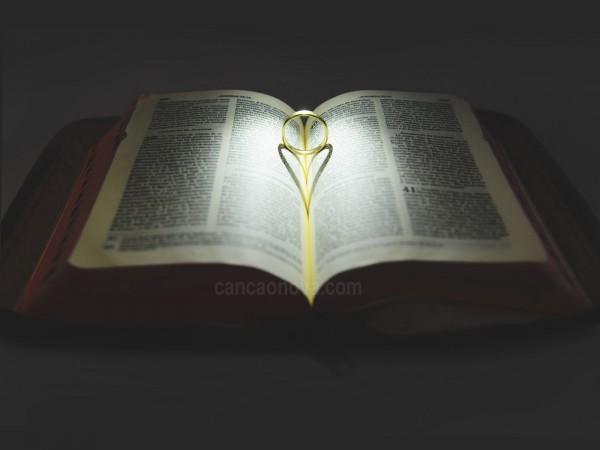 como_descobrir_o_verdadeiro_amor