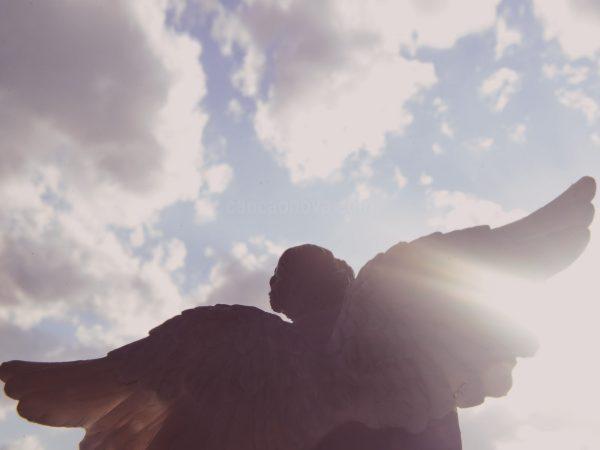 os_anjos_podem_rezar_conosco