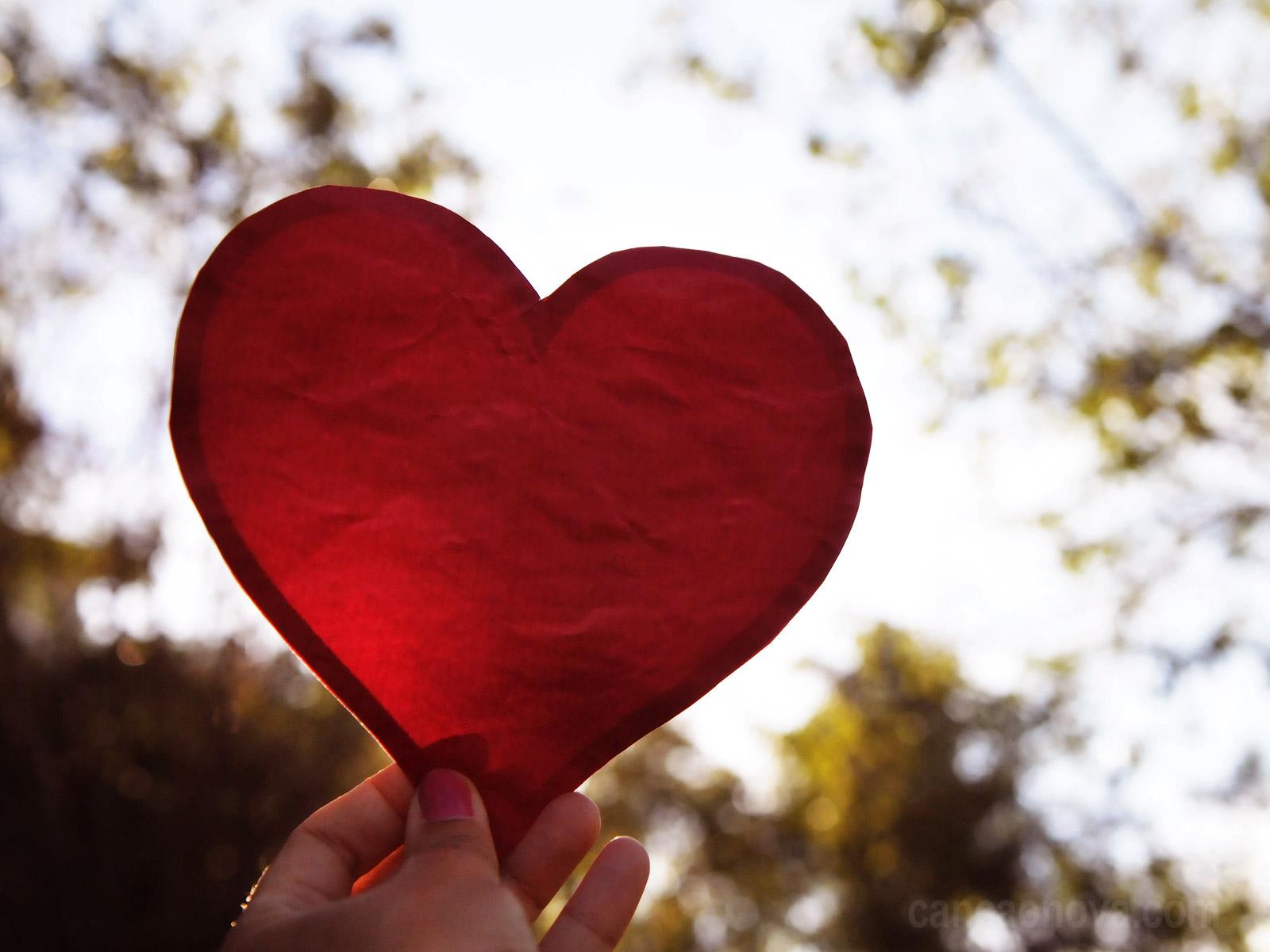 A canção do coração uma revisão de literatura do meridiano xin 6