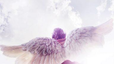 Você ainda conta com seu Anjo da Guarda?